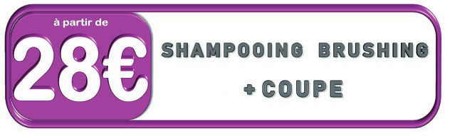 Prix champooning brushing + coupe chez VIP Espace Coiffure